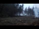 23.11.13 Бывшие леса Подмосковья в районе г. Химки